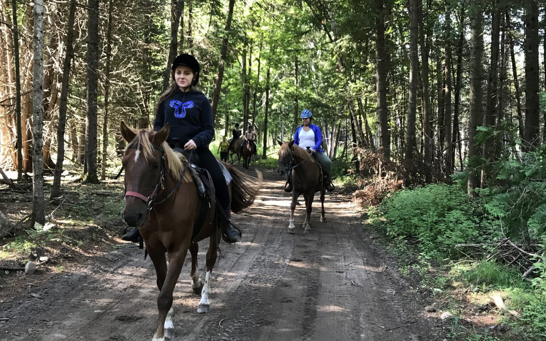 Guided Trail Ride